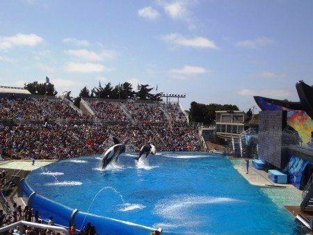Sea World 2