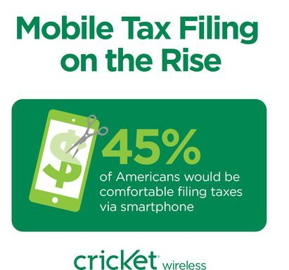 cricket-taxes-2014