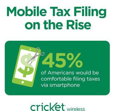 cricket-taxes-2014