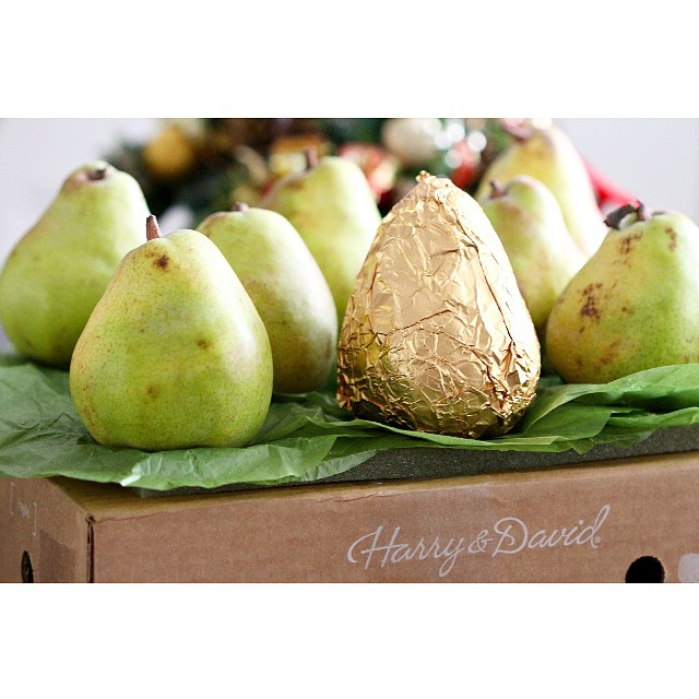 Look what just arrived --- @HarryandDavid Royal Riviera Pears! They're so perfectly ripe you can eat them with a spoon! Now about that ONE extra special gold foiled pear...should I eat it first or last?! Decisions, decisions... #BestPearsEver #food #Foodie #Pears #Fruit #RoyalRiviera #HarryandDavid #luxury #goldpear #delicious #love #instagood #igfood #tradition @georgeteh3